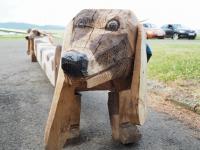 mini-AA 006 Najbolj zvesti pes v Jičinu